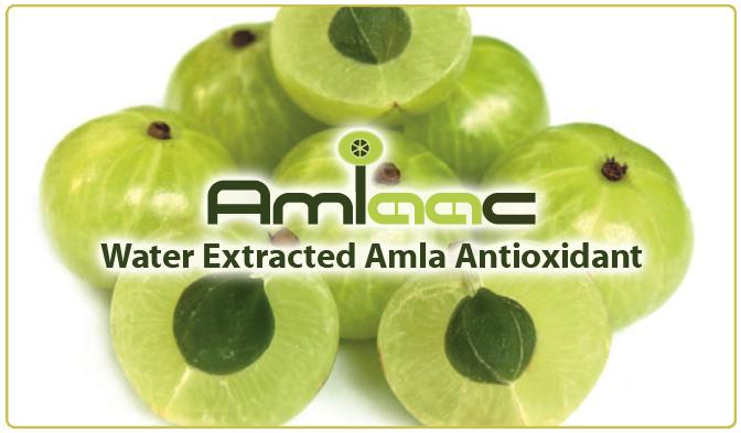 http://bioactivesamerica.com/wp-content/uploads/2016/11/AMLAAC_Slider_F-copy-2.png