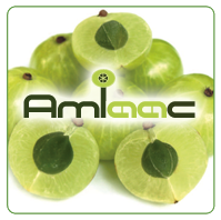 AMLAAC