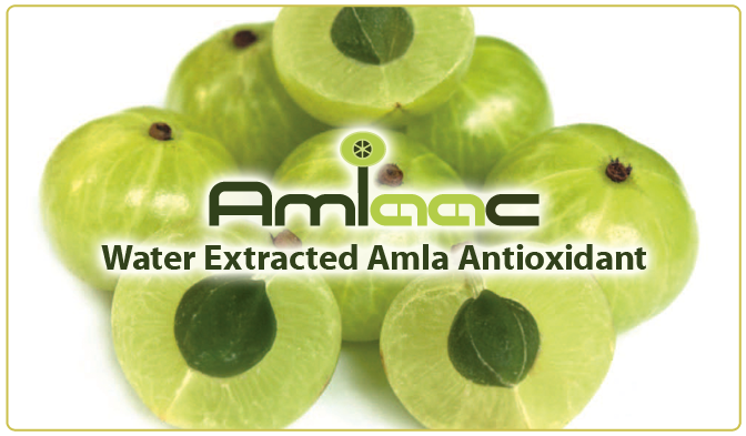 https://bioactivesamerica.com/wp-content/uploads/2016/11/AMLAAC_Slider_F-copy-2.png